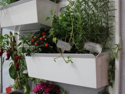Brothesign B1.0 Minimal Vertical Garden