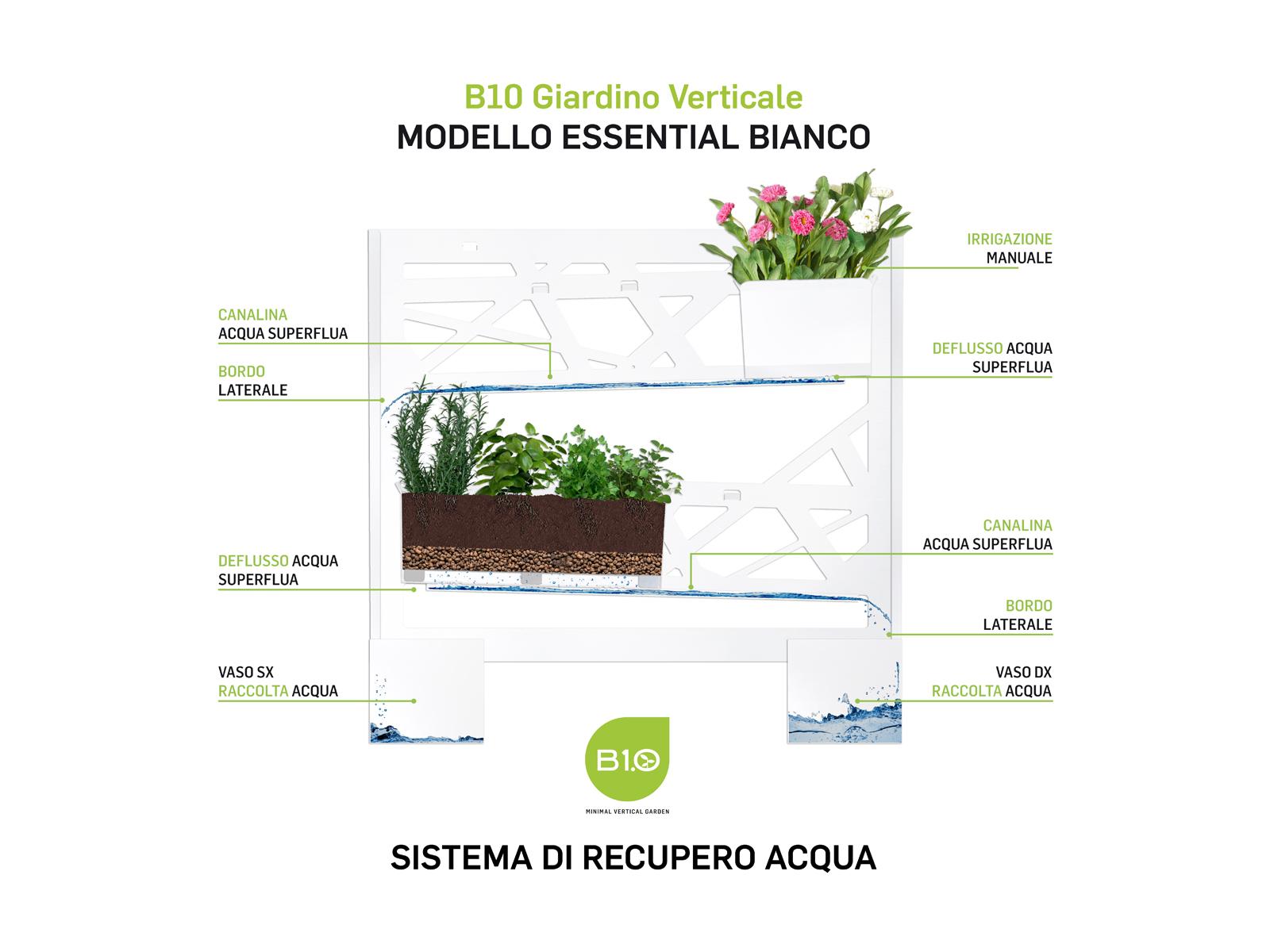 B10 Modello Essential